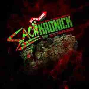 Sacii Kronick BY Ethan Sacii X Kodak Kronick